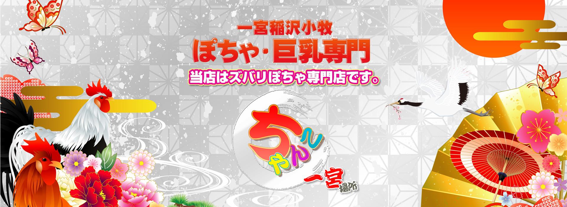 【愛知ちゃんこ一宮稲沢小牧】はぽっちゃり風俗専門のデリバリーヘルス(デリヘル)です。